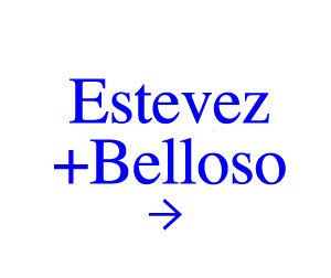 Estevez+Belloso